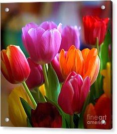 Tulips Light Acrylic Print by Lutz Baar