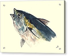 Tuna Fish Acrylic Print by Juan  Bosco