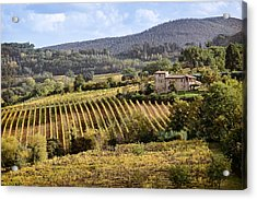 Tuscan Valley Acrylic Print by Dave Bowman