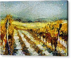 Tuscan Vineyard Acrylic Print by Dragica  Micki Fortuna