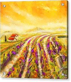 Tuscan Vineyard Sunset - Vineyard Impressionist Paintings Acrylic Print by Lourry Legarde