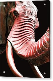 Tusk 4 - Red Elephant Art Acrylic Print by Sharon Cummings