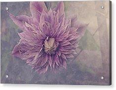 Twilight Acrylic Print by Faith Simbeck