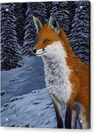 Twilight Hunter Acrylic Print by Rick Bainbridge
