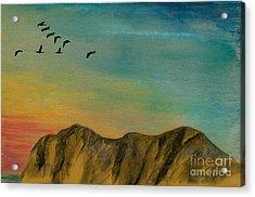 Twilight's Flight Acrylic Print by R Kyllo