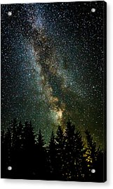 Twinkle Twinkle A Million Stars D1951 Acrylic Print by Wes and Dotty Weber