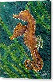 Two By Sea Acrylic Print by Amy Kirkpatrick