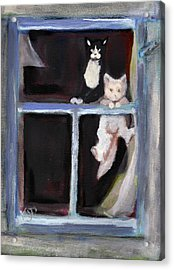 Two Cats Find An Old Window Sill Acrylic Print by Kemberly Duckett