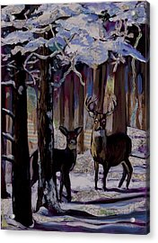 Two Deer In Snow In Woods Acrylic Print by Tilly Strauss