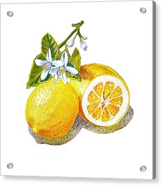 Two Happy Lemons Acrylic Print by Irina Sztukowski