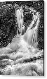 Two Into One Acrylic Print by Jon Glaser