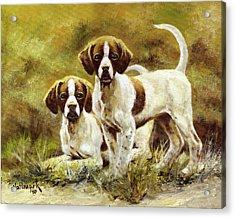 Two Of A Kind Acrylic Print by Bob Hallmark