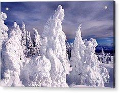 Two Top Mountain Loop Trail Acrylic Print by Thomas R Fletcher
