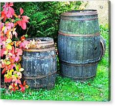 Two Wine Barrels And Red Ivy Digital Print Acrylic Print by Greg Matchick