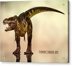 Tyrannosaurus Rex Dinosaur  Acrylic Print by Bob Orsillo
