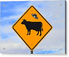 Ufo Cattle Crossing Sign In New Mexico Acrylic Print by Catherine Sherman