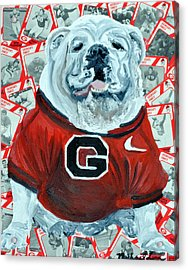 Uga Bulldog II Acrylic Print by Michael Lee