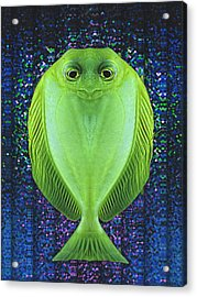 Uncle Fish Drops By For Dinner Acrylic Print by Wendy J St Christopher
