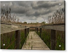 Under The Boardwalk Acrylic Print by Jonathan Davison