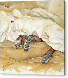 Under The Covers Acrylic Print by Leisa Temple