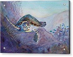 Under The Sea Acrylic Print by Teri  Jones