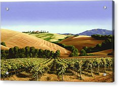 Under The Tuscan Sky Acrylic Print by Michael Swanson