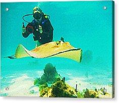 Underwater Photographer And Stingray Acrylic Print by John Malone Halifax Artist