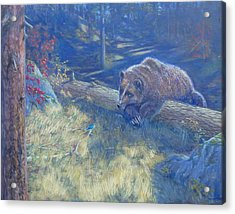 Unexpected Friends Acrylic Print by Charles Smith