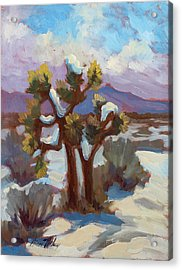 Unexpected Snowfall At Joshua Tree Acrylic Print by Diane McClary