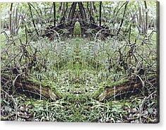 Unnatural 33 Acrylic Print by Giovanni Cafagna
