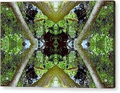 Unnatural 65.3 Acrylic Print by Giovanni Cafagna