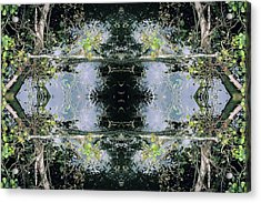 Unnatural 73 Acrylic Print by Giovanni Cafagna