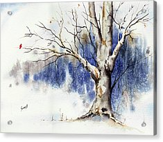 Untitled Winter Tree Acrylic Print by Sam Sidders