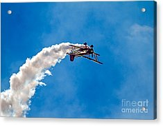 Up Side Down Acrylic Print by Robert Bales