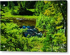 Upper Dewey Creek Acrylic Print by Jeff  Swan