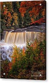 Upper Tahquamenon Falls II Acrylic Print by Todd Bielby