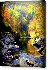 Upstream Acrylic Print by Karen Wiles