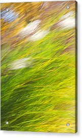Urban Nature Fall Grass Abstract Acrylic Print by Christina Rollo
