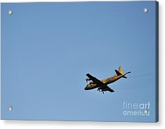 Us Navy Military Airplane Acrylic Print by Sami Sarkis