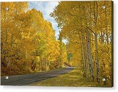 Usa, Colorado, Black Canyon Acrylic Print by Jaynes Gallery
