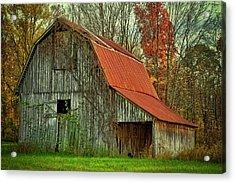 Usa, Indiana Rural Landscape Acrylic Print by Rona Schwarz
