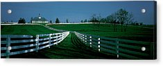 Usa, Kentucky, Lexington, Horse Farm Acrylic Print by Panoramic Images