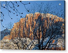 Utah Usa View Of The Watchman In Zion Acrylic Print by Scott T. Smith