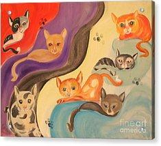 Valley Of The Kittens Acrylic Print by Rachel Carmichael
