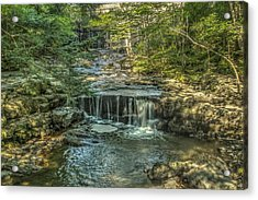 Vaughan Woods Stream Acrylic Print by Jane Luxton