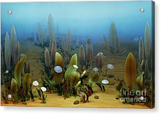 Vendian Marine Life Acrylic Print by Chase Studio