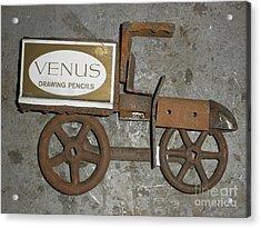 Venus Acrylic Print by Michael Sauro