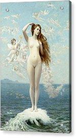 Venus Rising The Star Acrylic Print by Jean Leon Gerome
