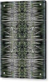 Vibrations Acrylic Print by Dawn J Benko