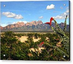 View From Roadrunner Acrylic Print by Kurt Van Wagner